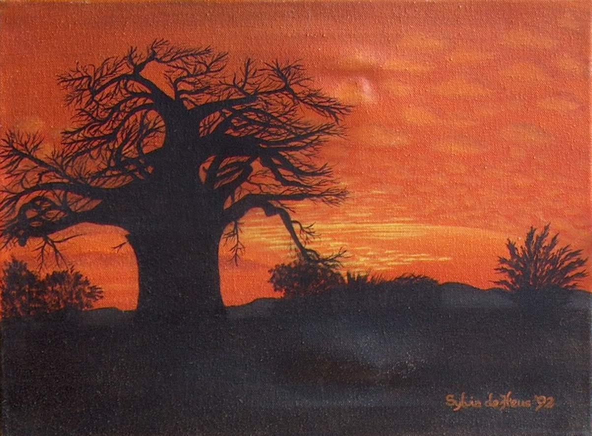Baobab - gevoelswereld